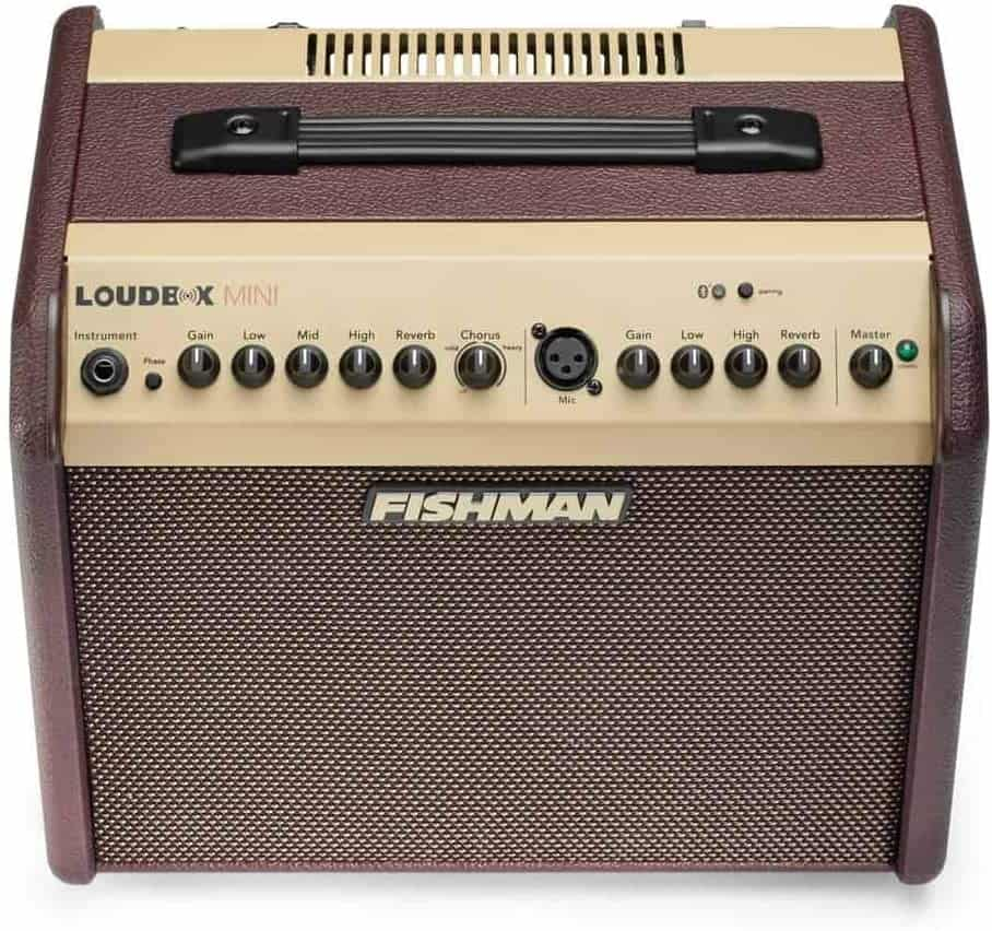 Best with Bluetooth connectivity: Fishman Loudbox Mini